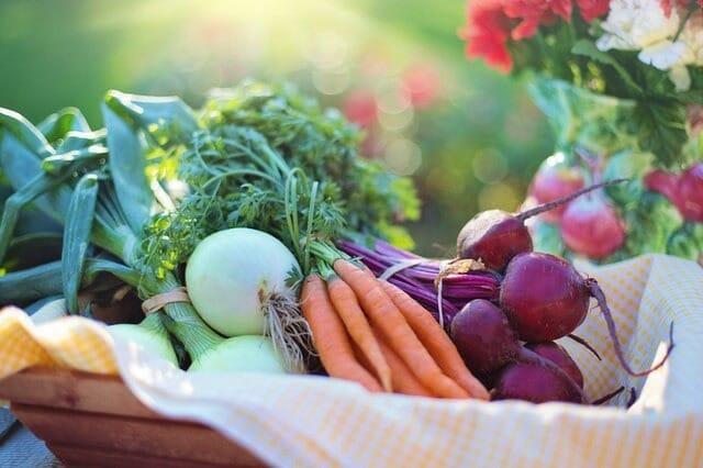 Healthy diet vegetables