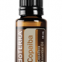 The Health Benefits of Copaiba Oil